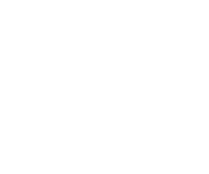 Destinations Inc. WY Logo White